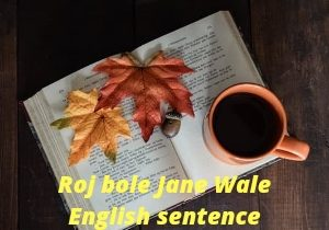 Roj Bole Jane Wale English sentence