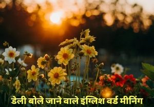 Daily Use Vocabulary Words with meaning in Hindi(set-35 to 40)