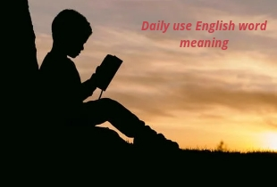 Daily Use Vocabulary Word