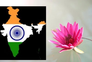 Essay on my Great India in Hindi